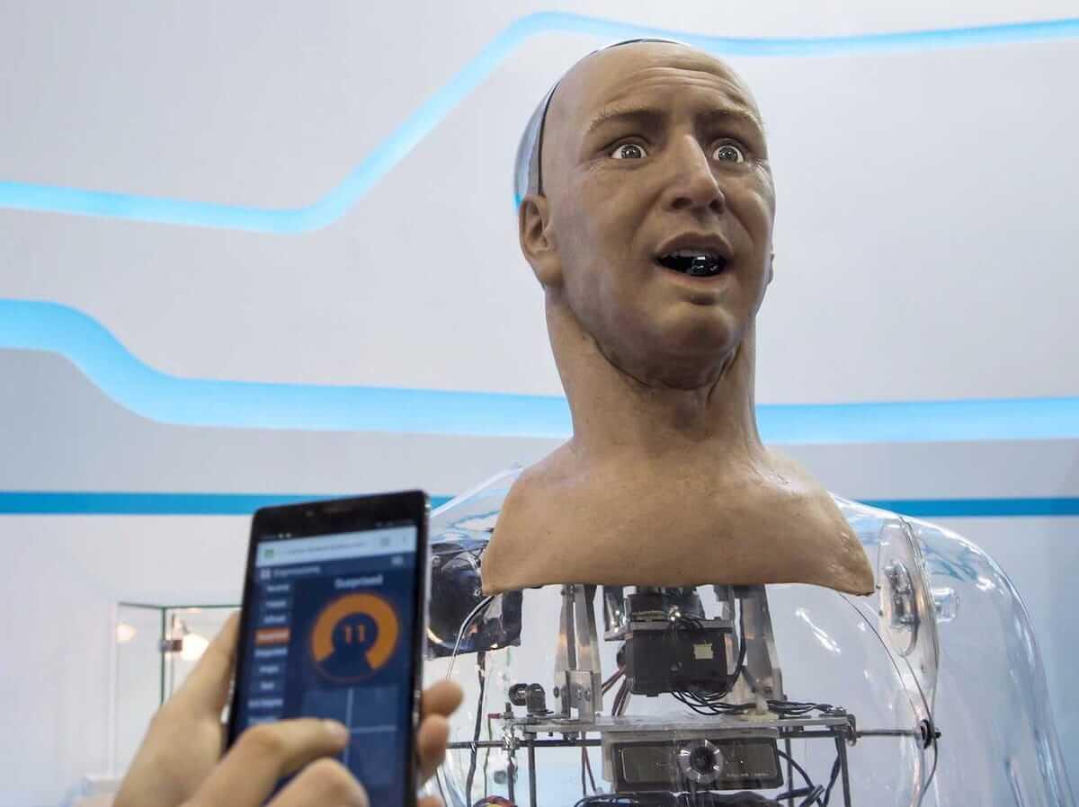 Hanhumanoid robot